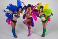 самба карнавал -21-56