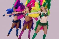 самба - карнавал -21-56