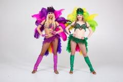 самба карнавал 299 (2)